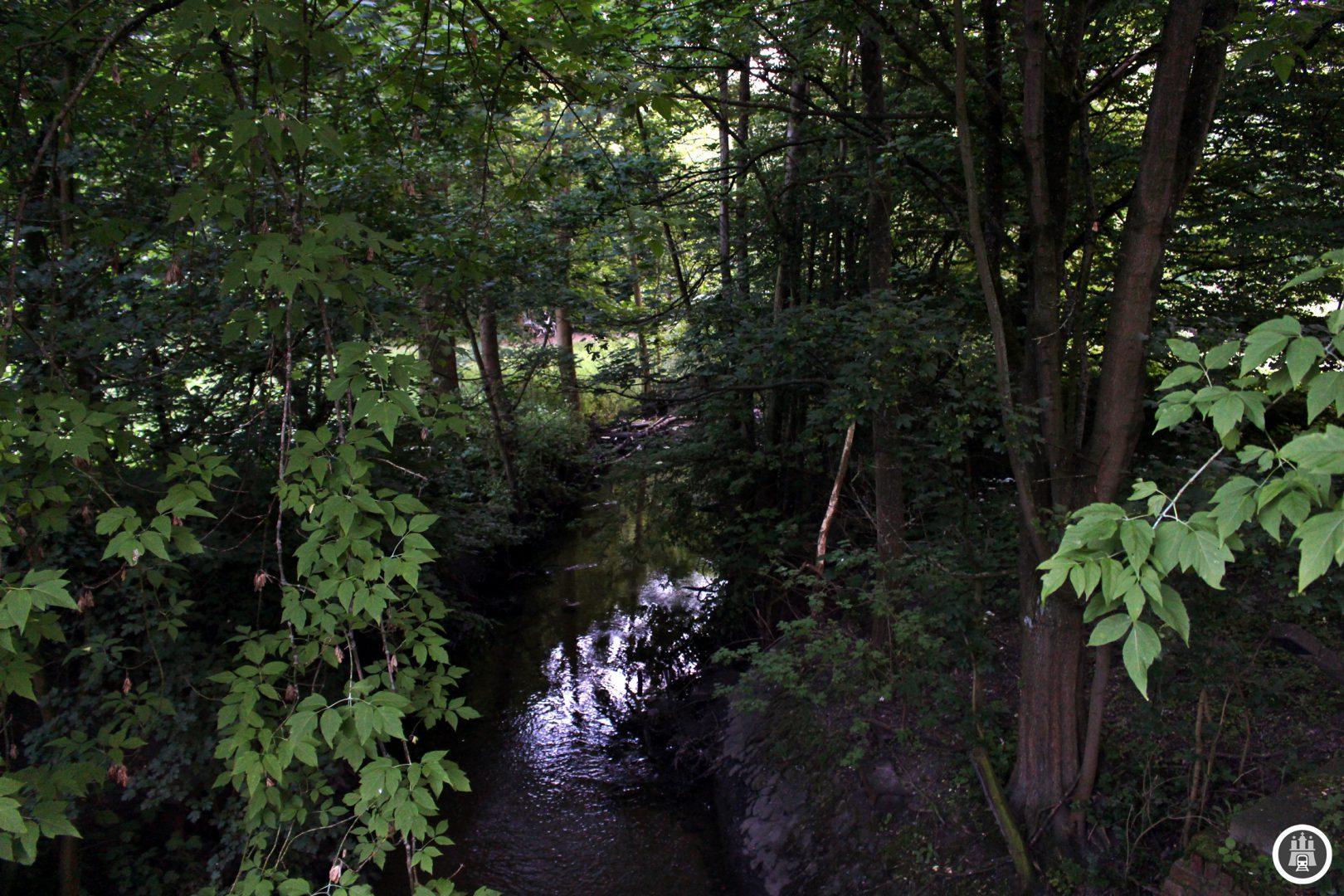 Der Schleemer Bach ist etwa 10 Kilometer lang und führt von Rahlstedt in die Bille, dabei fließt dieser in den und anschließend aus dem Öjendorfer See, nördlich der Kreuzung befindet sich der Schleemer Teich, an dem sich einst eine Mühle befand.