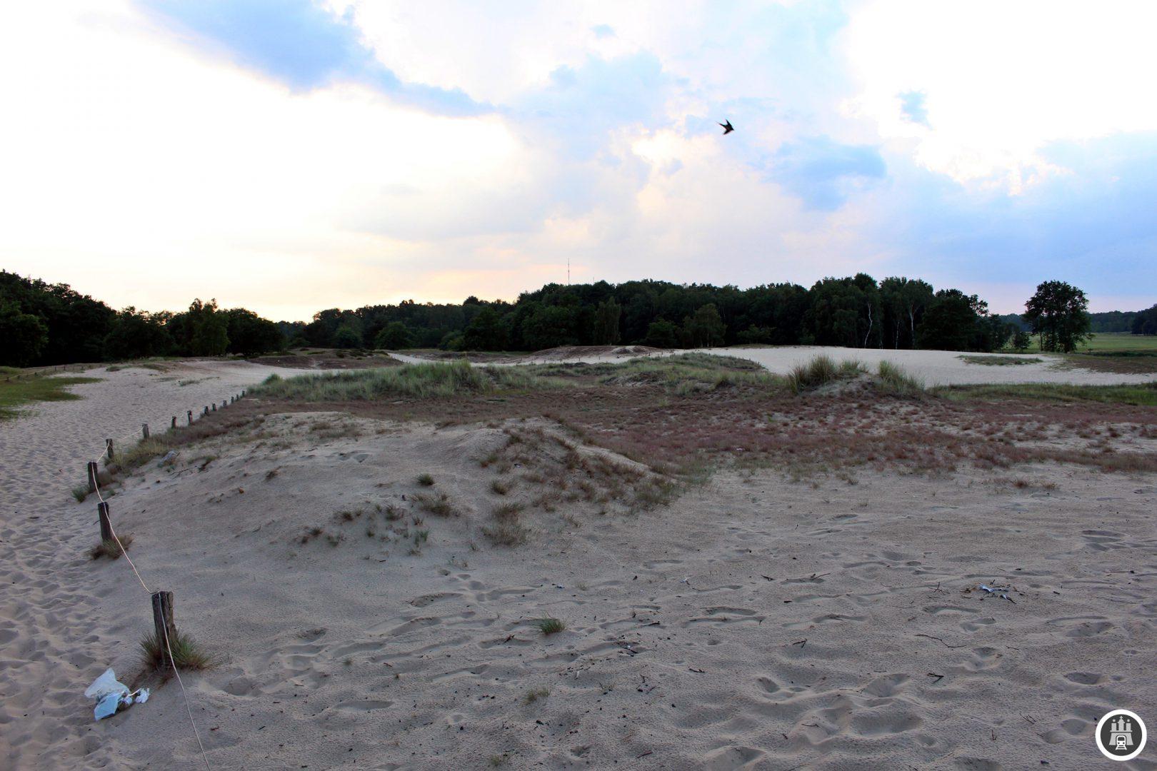 Das Naturschutzgebiet Boberg sticht vor allem durch seine Dünen hervor, die sonst eigentlich nur am Meer anzutreffen sind. Zudem befindet sich hier ein Flughafen für Segelflugzeuge. Längst kein Geheimtipp mehr ist der Boberger See, welcher in den letzten zehn Jahren vom Naturidyll zum Massenerholungsort an warmen Sommertagen verkam.