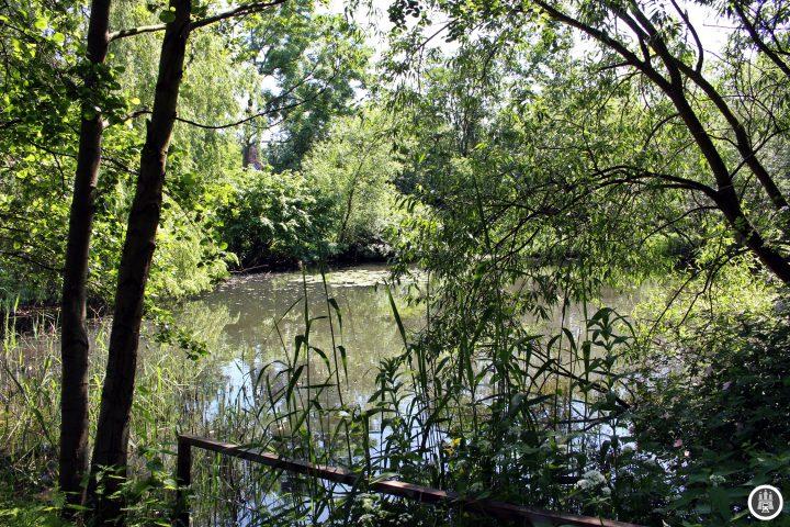 Der Liliencronpark wurde am 3. Juni 1934 zum 90-jährigen Geburtstag des Dichters Liliencron samt Denkmal eröffnet. Der Park ist etwa 1.100 Quadratmeter groß, in ihm befindet sich der Liliencronteich, durch den die Wandse fließt.